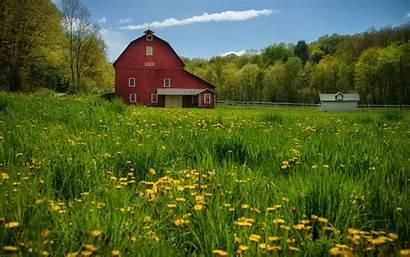 Spring Country Barn Desktop Meadow Trees Dandelions
