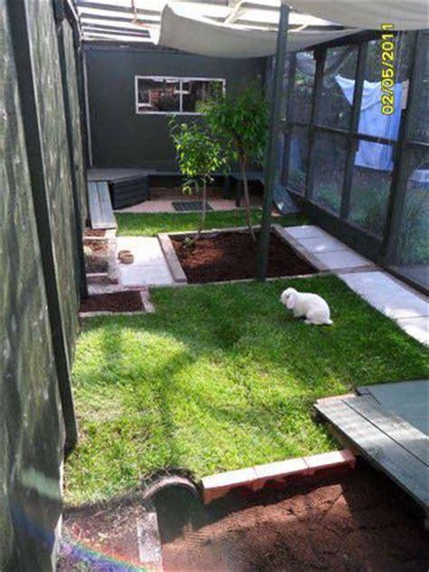 design  rabbit play area  ideas  inspire