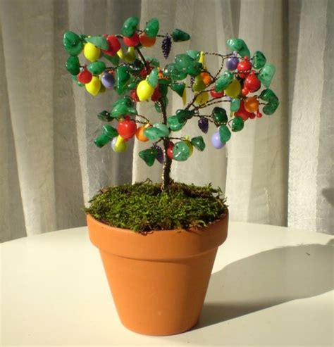 fruit salad trees miniature fruit salad tree great housewarming gift