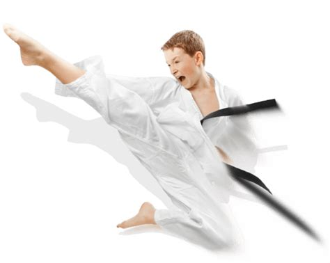 Rock Solid Karate - MMA Classes - Gainesville and Flowery ...