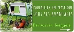 Fréquence Ponte Poule : le perchoir l 39 accessoire indispensable pour vos poules ~ Melissatoandfro.com Idées de Décoration