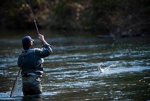 Fly Fishing Wallpapers | 2017 - 2018 Best Cars Reviews