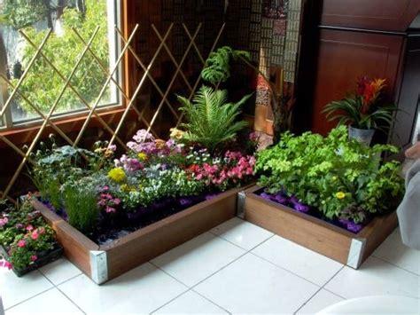 25+ Trending Indoor Vegetable Gardening Ideas On Pinterest