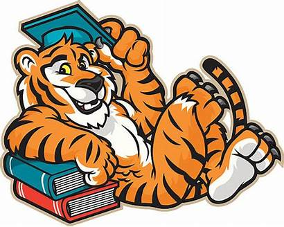 Mascot Tiger Graduate Vector Paw Clip Clipart