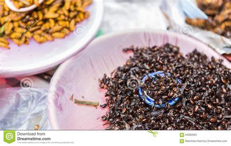 cr駱ine cuisine insectes frits dans le plat photo stock image 64080693
