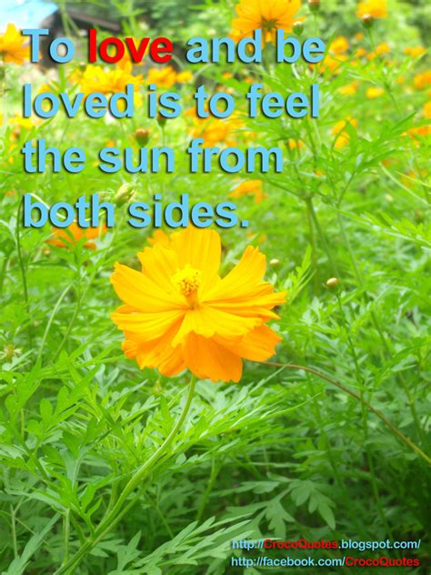 Crocoquotes To Love And Be Loved Is To Feel The Sun From