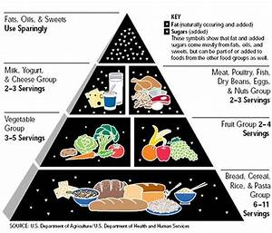 Dr. Mark Hyman: Here's How the Food Pyramid Should Look ...