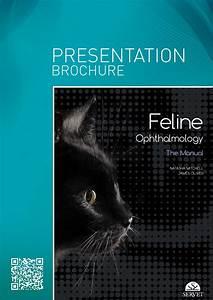Feline Ophthalmology  The Manual By Grupo As U00eds