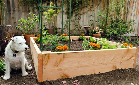 small raised bed vegetable garden how to build a raised bed vegetable garden 5 raised garden beds you can build in half a day