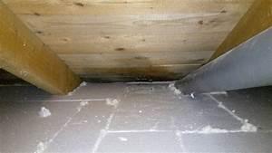 Schimmel Auf Holz Mit Essig Entfernen : schimmel und feuchtigkeit im dachboden bauforum auf ~ Articles-book.com Haus und Dekorationen
