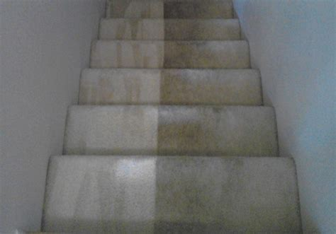 Carpet Cleaning Beaufort Sc Repair Small Section Of Carpet Martinez Cleaning Albany Or Red Recruiting Software Winnipeg Mb Carpets Inc Fredericksburg Va Installation Guide Pdf How To Install A Tack Strip Abc Tapas Restaurant