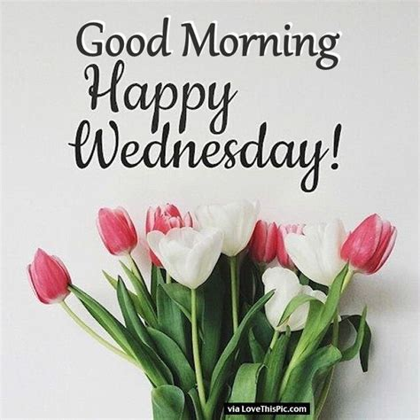 Images Of Happy Wednesday Morning Happy Wednesday Flowers Pictures Photos And