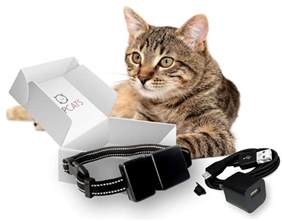 gps tracker for cats the best gps tracker for cats 2017 lost no more