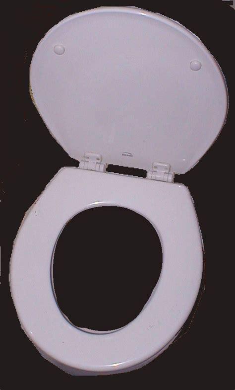 Toilet seat - Wikipedia