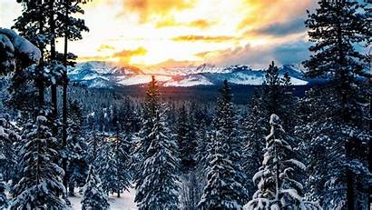 Winter Snow Forest Mountains Laptop Mountain Tablet