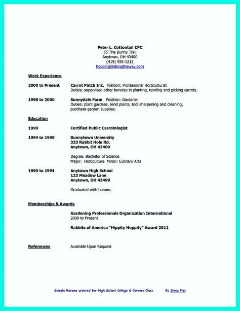 nice  college student resume    job