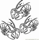 Lobster Coloring Pages Printable Template Coloringpages101 Larry Claw sketch template