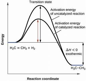 Enzyme Reaction Rate Diagram Enzymatic Reaction Diagram ...
