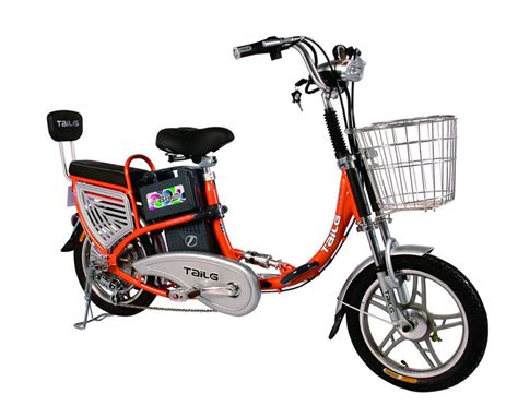 China Hub Motor Electric Scooter (tdr228z)