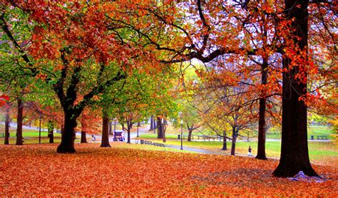 best fall colors best places to see fall colors grand european travel
