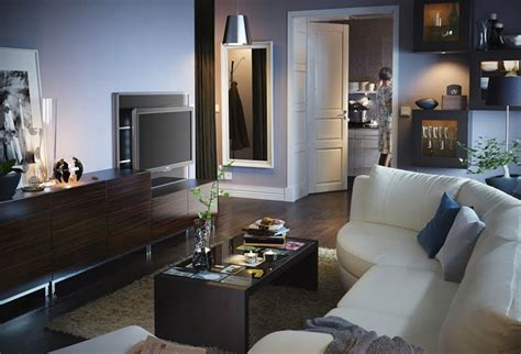 2011 Ikea Living Room Design Ideas  Interior Design