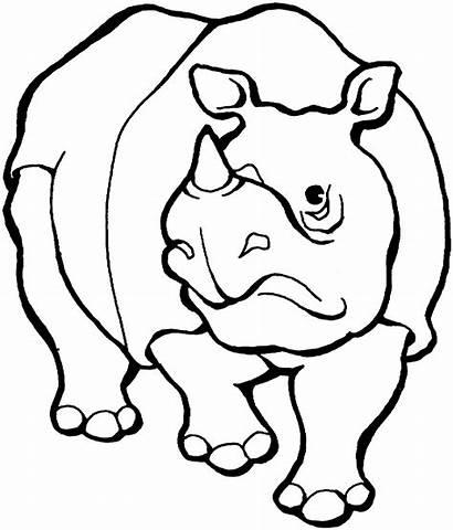 Coloring Rhinoceros Pages Rhino Javan Printable Animals