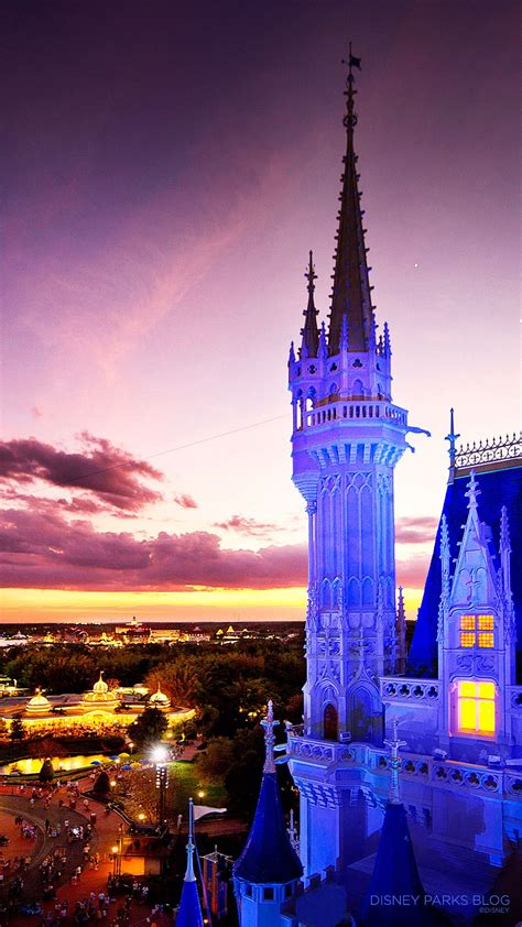 Disney World Iphone Wallpaper by Cinderella Castle Sunset Iphone6 Wallpapers Iphone