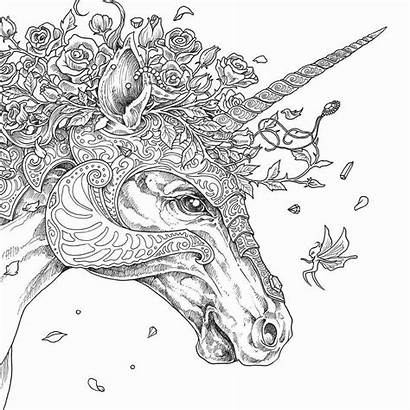 Coloring Pages Unicorn Adults Animal Adult Printable