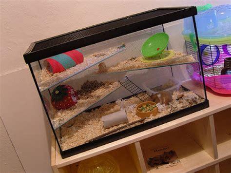 aquarium cages for hamsters hamster cages aquarium