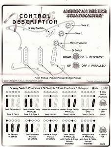 Fender S1 Switch Wiring Diagram