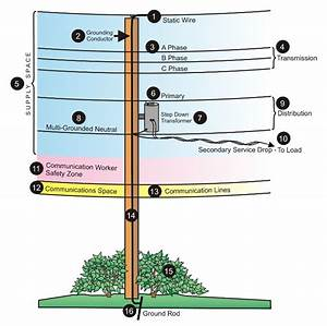 Field Guide To Utility Poles   Coolguides