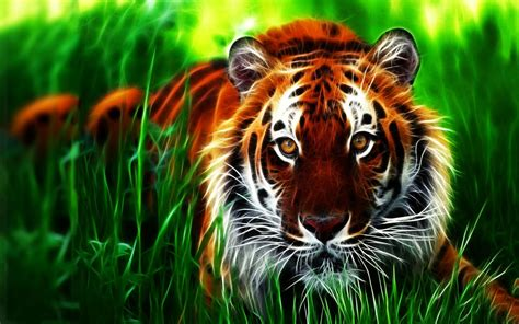 Tiger Wallpaper 3d For Iphone