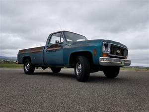 1973 Chevrolet Custom 20