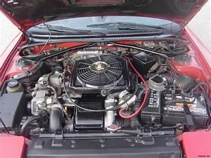 Nissan 370z Forum - Dlek00 U0026 39 S Album  Alltrac