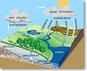 Water Cycle Diagram With Labels