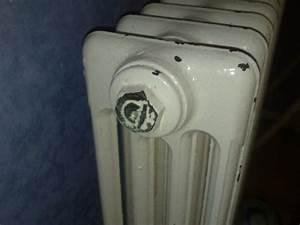 Radiateur Ne Chauffe Pas Tuyau Froid : purger vieux chauffage en fonte est ce possible ~ Gottalentnigeria.com Avis de Voitures