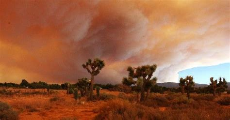 climate related natural disasters cost   billion