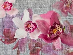 Fototapete tapete orchidee blumen bluten foto 360 x 270 cm for Balkon teppich mit pferde tapete fototapete