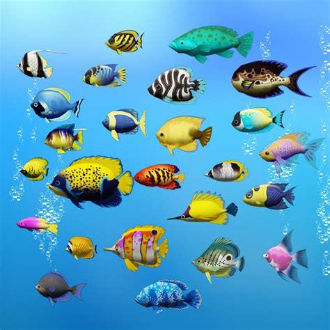 sea fish  max