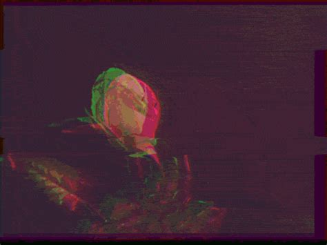 glitch flower tumblr