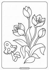 Coloring Printable Flowers Pages Pdf sketch template