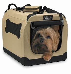cat carriers for large cats xpressionportal With dog carry kennels