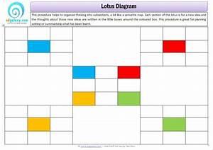 Lotus Chart