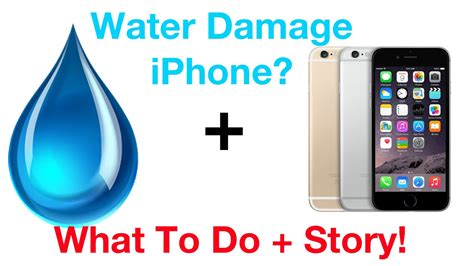 dropped my iphone in water dropped iphone 6 in water what to do story