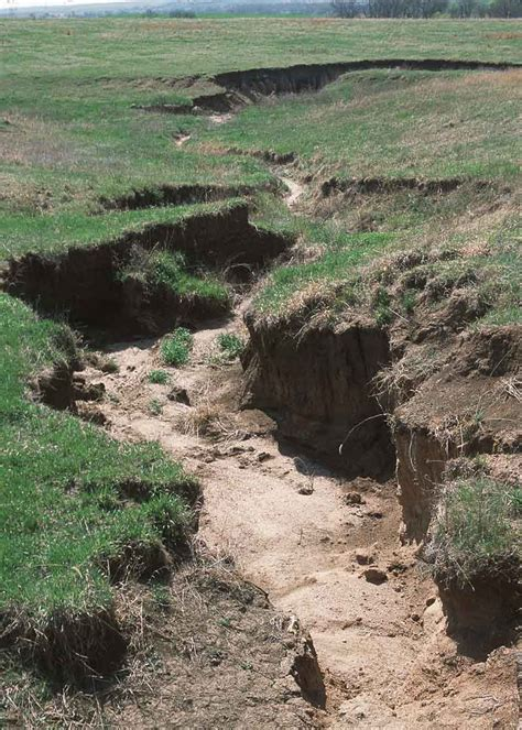 erosion landscaping erosion storm water geotextiles landscape fabric stetson building products llc