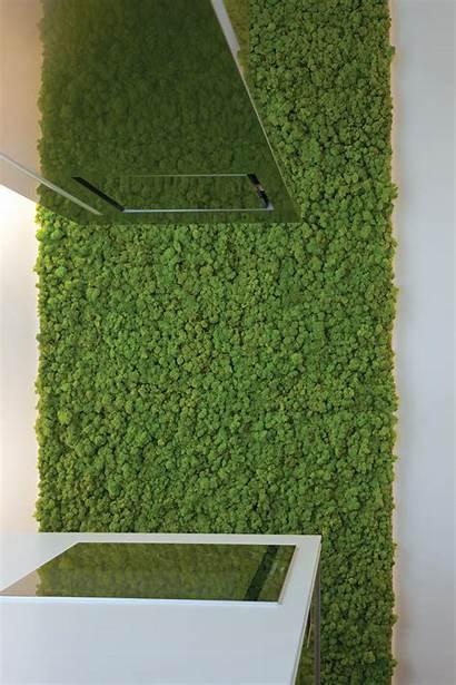 Moss Verde Profilo Parete Living Walls Tile