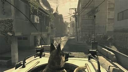 Duty Call Ghosts German Shepard Dog Indir