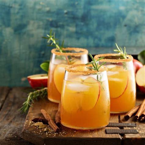 juice apple cider hard extractor fitx site