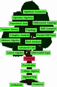 Background Information  Calculus And Its Place In Mathematics