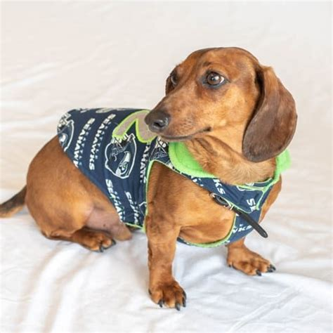 dog jerseys sports apparel seahawks mariners gear